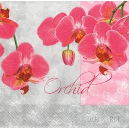 http://dekoret.pl/1379-thickbox_org/serwetka-orchidea.jpg