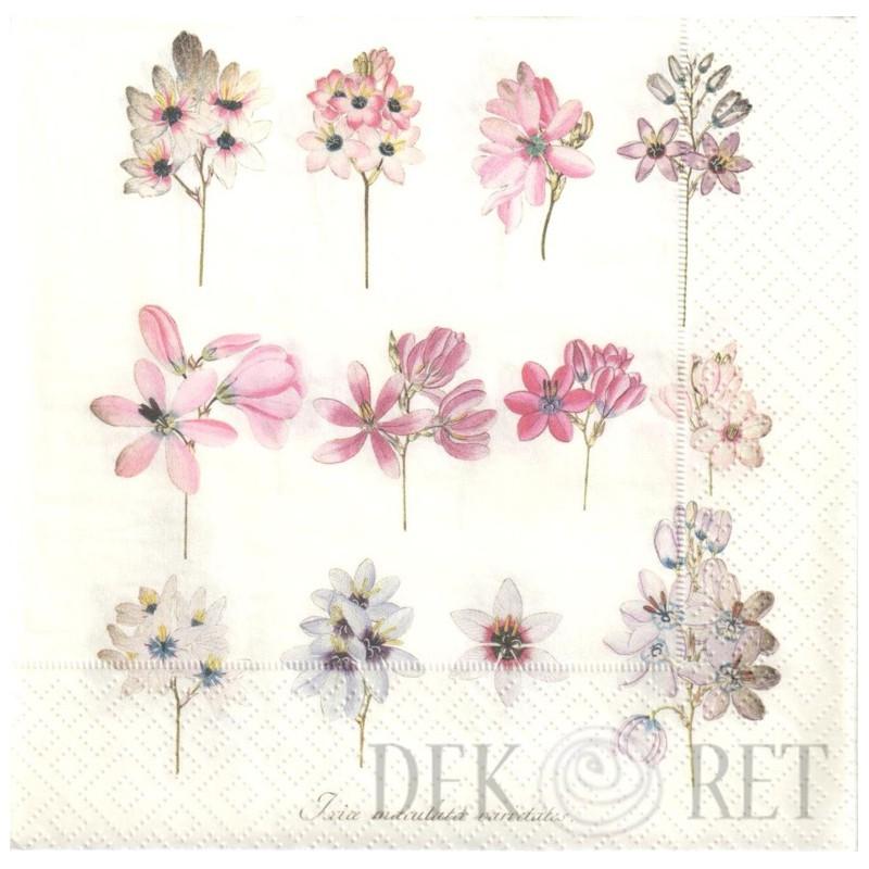 Http Dekoret Pl 2242 Thickbox Org Serwetka Rycina Delikatne Kwiaty Jpg Flower Power Flowers Baby Mobile