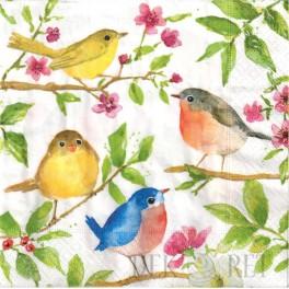 http://dekoret.pl/6838-thickbox_org/serwetka-kwiatki-i-ptaszki.jpg
