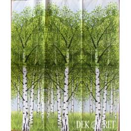 http://dekoret.pl/8870-thickbox_org/serwetka-brzoza-drzewa.jpg
