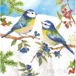 http://dekoret.pl/9845-thickbox_org/serwetka-niebieskie-ptaszki.jpg