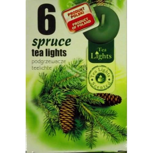 PODGRZEWACZE TEA-LIGHT - ŚWIERK/SPRUCE