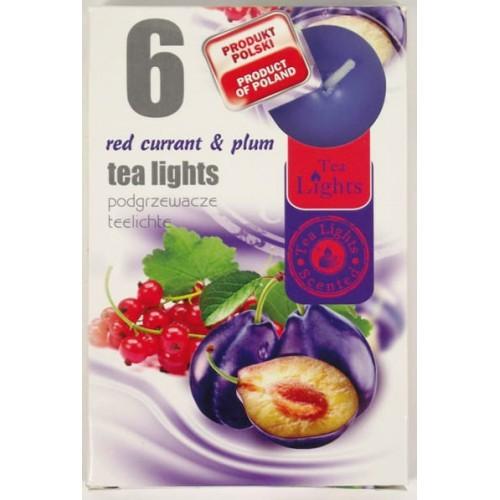 PODGRZEWACZE TEA-LIGHT - PORZECZKA&ŚLIWKA/ RED CURRANT&PLUM