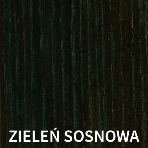 BEJCA WODNA 200ML - ZIELEŃ SOSNOWA