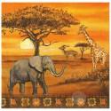 Afryka, Safari